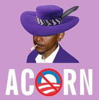 Acorn_200